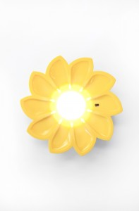 The Little Sun